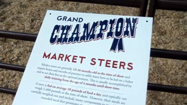 texas-state-fair-grand-champion